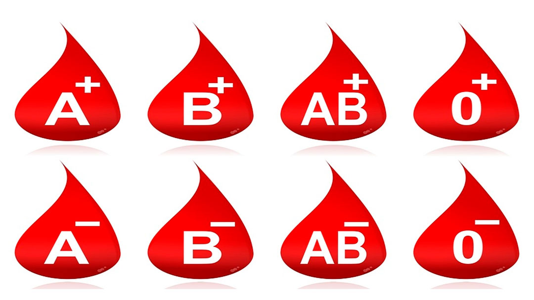 dieta dei gruppi sanguigni, emodieta, genetica, alimentazione
